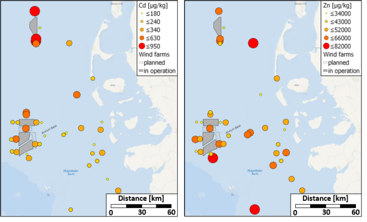 Initial results of mapping heavy metal sediment concentrations in the vicinity of wind farms and background reference areas in the German Bight